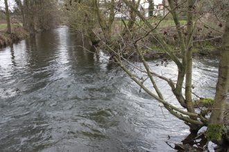 Mündung Afte in Alme am Lustgarten